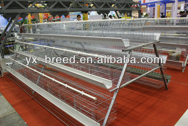 Angola Poultry Farm Cage with automatic drinker hang cups
