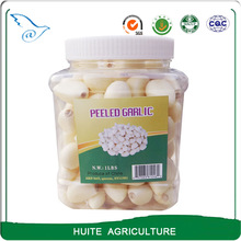 High quality Peeled Garlic with Low Price