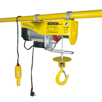 Small Construction Material Lift Chain Block Hoist Philippines