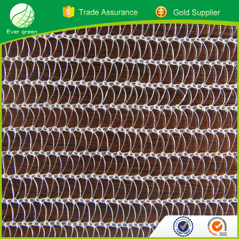 Plants Protection Nets HDPE Material Warp Knitting Anti Hail/Insect Nets
