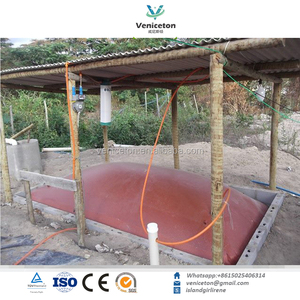Veniceton China biogas digester images in kenya and india