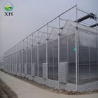 New Design Agricultural/Commercial mult-span venlo Greenhouse
