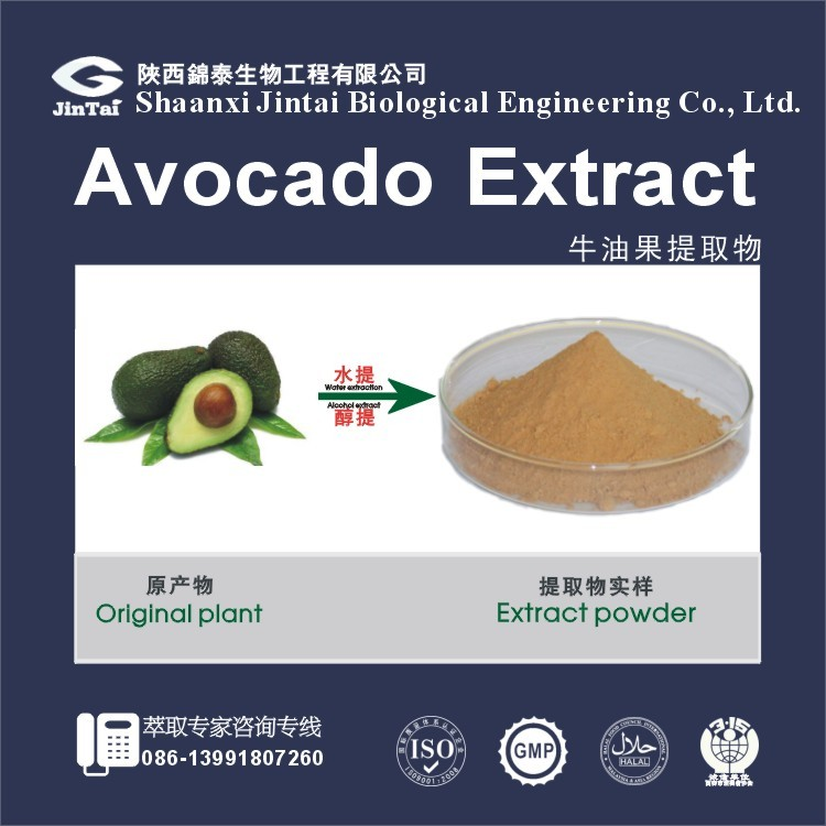 persea americana Mill./avocado extract 10:1