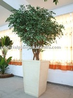 Artificial green ficus Tree with pot for home decoration