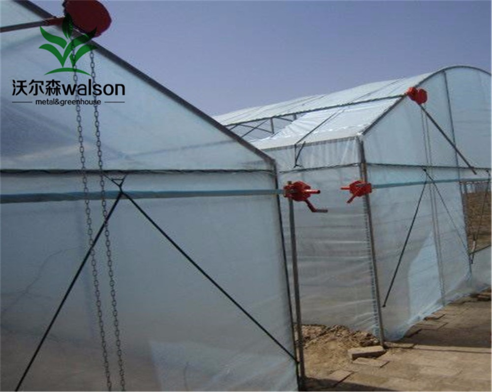 Factory price Plastic film tunnel horticultural green house for farming