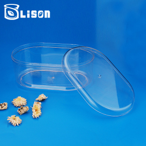 Free Sample Food Transparent PET Clear Plastic Container Box Small Storage Hard Plastic Gift Box With Cap