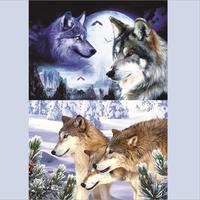 New Design Lenticular Animal Wolf 3d Pictures For Home Decor With Factory Price