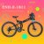 36v 250w cheap electric mountain bicycle