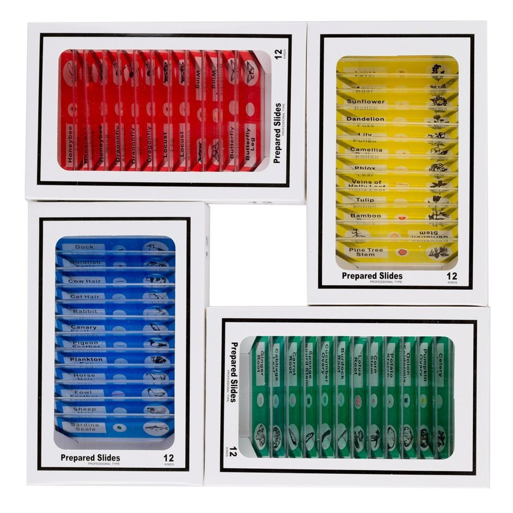 48PCS Kids Plastic Prepared Slides for Microscope of Animals Insects Plants Flowers Sample Specimens for Basic Biological Science Education #81053