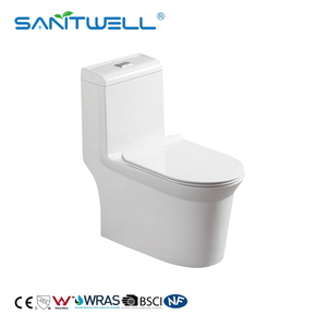 European Standard Popular Bathroom Sanitary Ware WC Ceramic One Piece Siphonic Bathroom Accessories Toilet