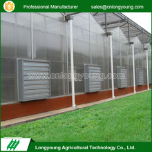Manufacturer custom polycarbonate sheet vegetable factory greenhouse