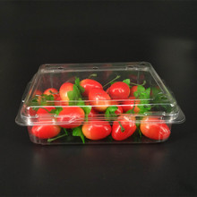 eco-friendly and disposable PET plastic rectangular fast food tray