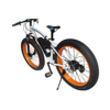 EcoRider Discounted Kids Motor Bikes 26 inch 45 degrees Snow Bicycle Electric Fat Bike