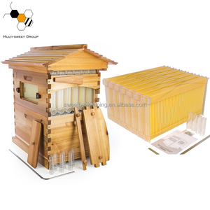 Chinese bee hives/honey flow bee hive/flow honey bee keeping box