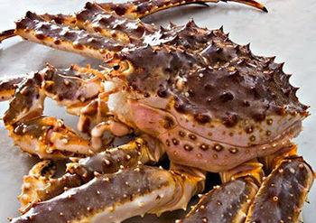Freezing Fresh Crab Cakes
