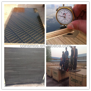 High quality phenolic board / shuttering plywood /concrete formwork panle