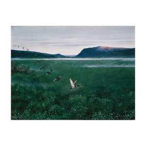 Free Shipping Theodor Kittelsen Giclee Canvas Print Paintings Poster Reproduction Fine Art Wall Decor(The twelwe wild Ducks)
