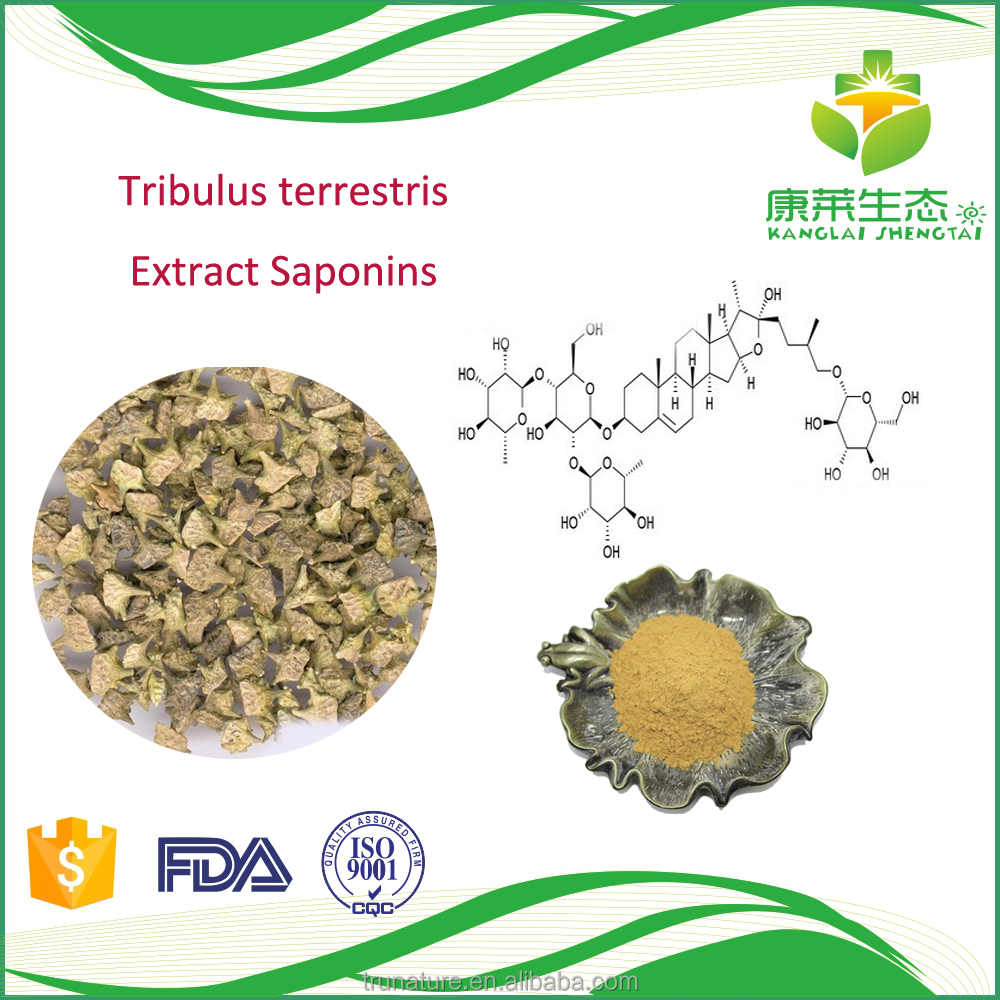 Chinese natural herbal bulgarian tribulus terrestris extract male infertility improvement