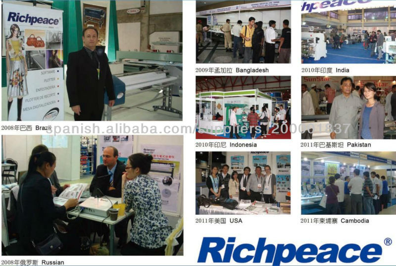 Richpeace Computerized Single Needle Quilting Machine-Lift Head