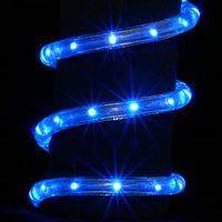 Merry Christmas Different Color Best Selling Led Rope Light
