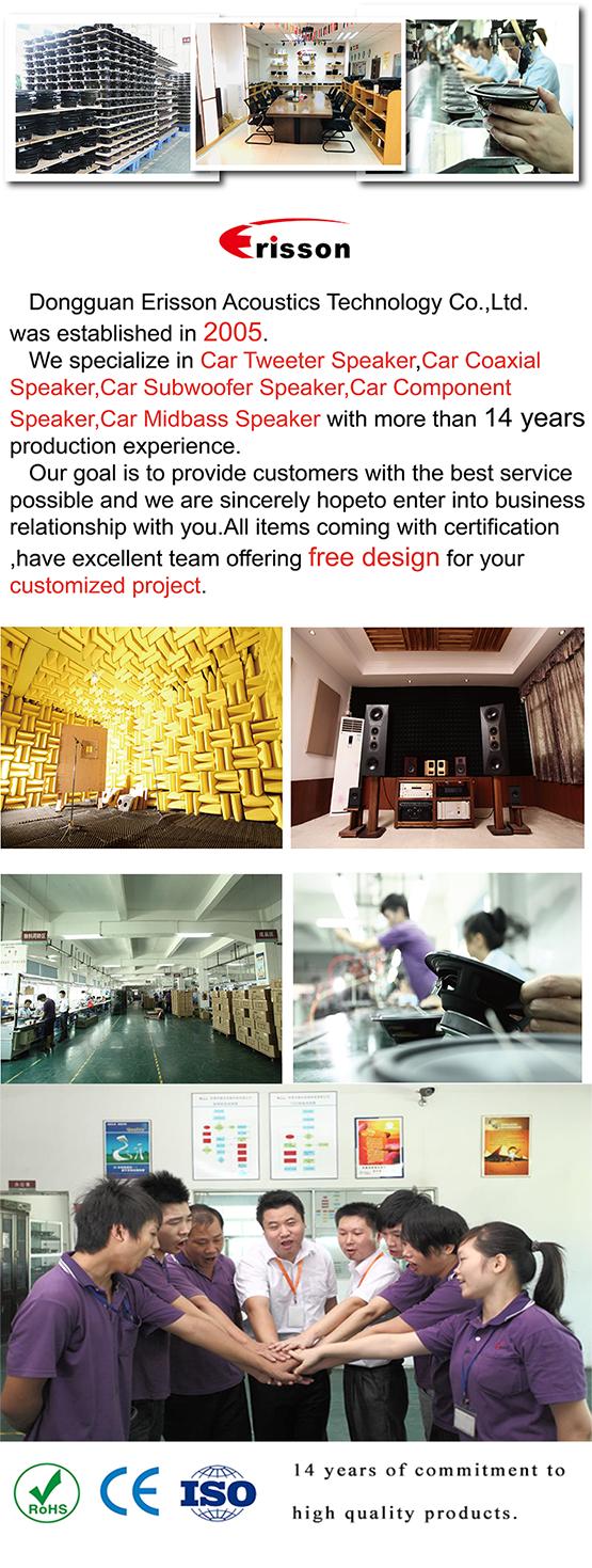 """OEM มืออาชีพ/OMD ผู้ผลิต 6.5 """"ที่ใช้งานเพดานโรงละครลำโพงเพดานแขวนลำโพงสำหรับบ้าน"""