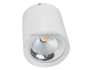 China suppliers cheap 20W surface mounted LED COB down light zhongshan