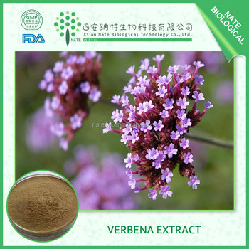 China supplier of Lemon Verbena Extract with 10:1 Verbena officinalis glycosides