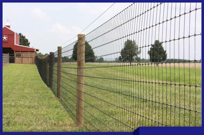 Cheap Standard Metal Fencing Cattle Panels Manufacturer