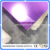 purple color mirror acrylic sheet for decorative and wall