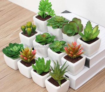 Artificial Small Home Decor Potted Plant For Indoor Decoration Buy