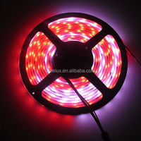 Dream color ic2801 32led cut 1led 5m per roll 5v led strip light