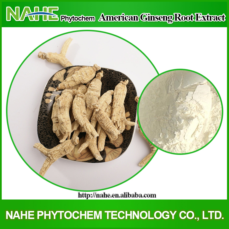 Chinese herb medicine panax ginseng extract powder 2015 hot sale ginseng (panax )