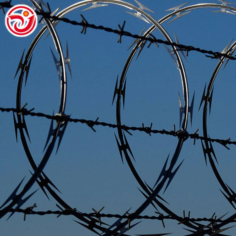 Cheap Double Barbed Wire, Cheap Double Barbed Wire Suppliers and ...