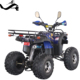 Wholesale 250cc 4 wheel kids quad bike for sale