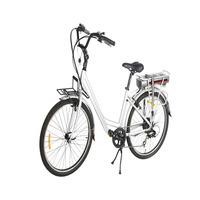 European style rechargeable and new electric bicycle