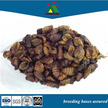 Tetra Food Freeze Dried Silkworm Silk Worm
