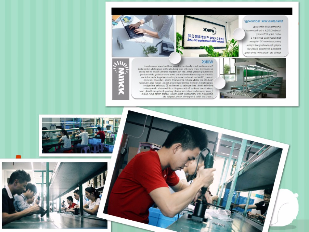 The Original Wiikk Factory Provide Directly 65cm Advertising Hologram 3D Led Device