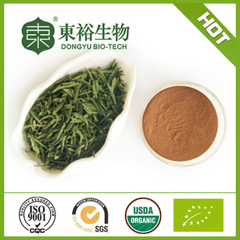 Hot selling green tea extract tea polyphenols with factory price