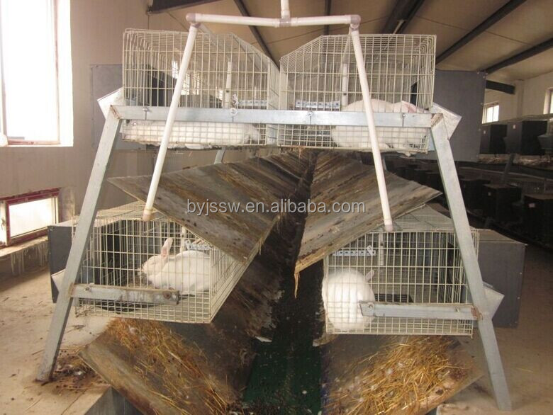 2 layer rabbit cage-1.jpg