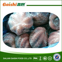high quality frozen raw clean octopus for sale from dalian