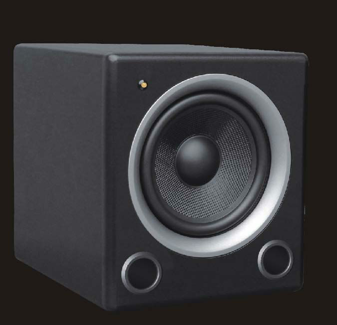 Manufacturer Supply D10 Professional 10 inch Powered 100w Subwoofer Speaker