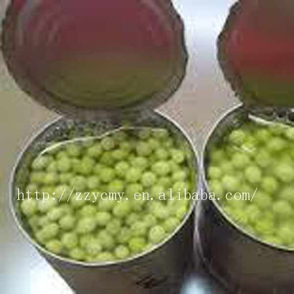 Best Canned Green Peas in Brine400g X 24 Tins with good Price