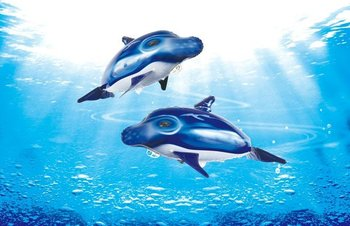 Y Flying Dolphins Remote Controll...