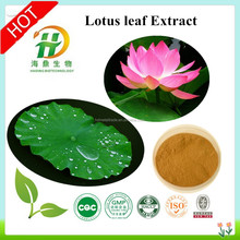 Premium Lotus Leaves Extract / Easy Weight Loss Lotus Leaf Powder