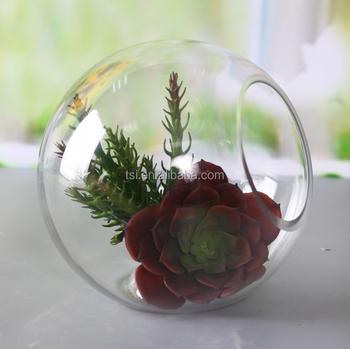 Wholesale Clear Clear Glass Ball Terrarium Buy Clear Glass Globe