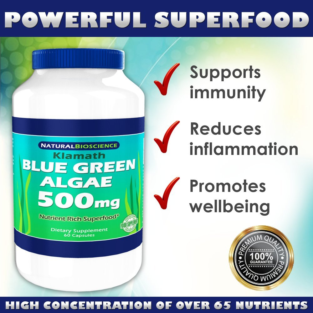 Buy Klamath Blue Green Algae 500mg Nutrient Rich Superfood More Nutritious Than Spirulina And