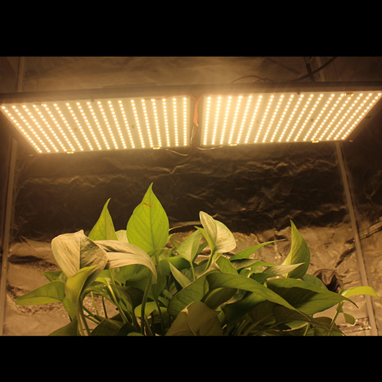 china wholesale 120w quantum samsung v2 led grow lights for indoor garden