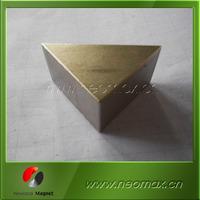 professional triangle/delta neodymium rare earth magnets manufacturer