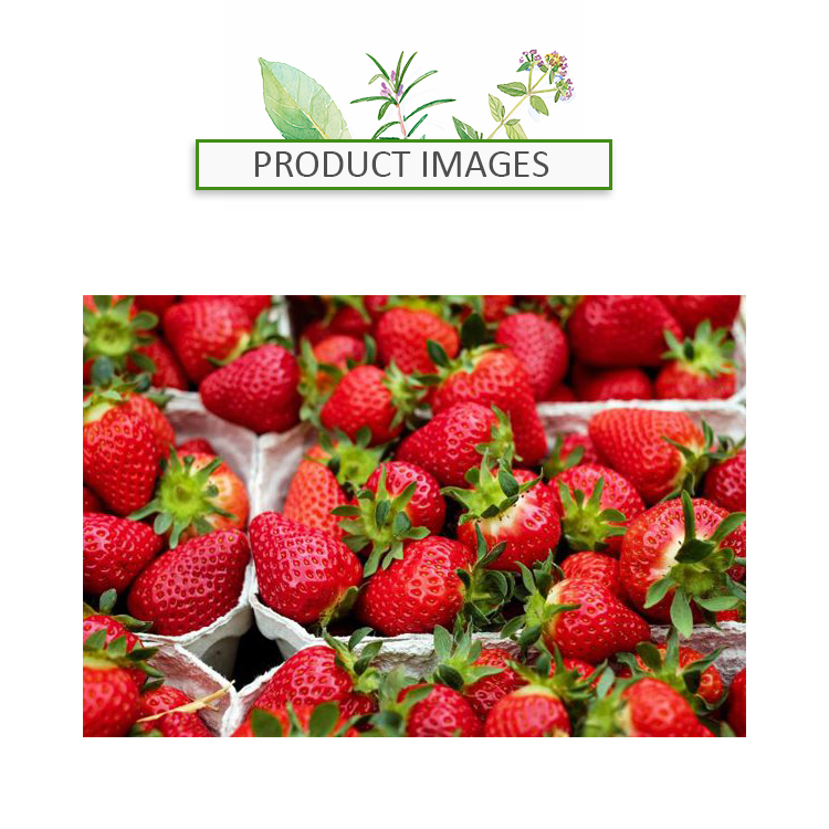 Egypt Export Natrual Dry / Fresh Fruits Strawberry