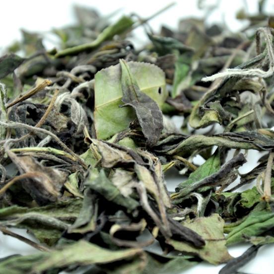 Hot sale private label organic white tea white peony bai mu dan - 4uTea | 4uTea.com